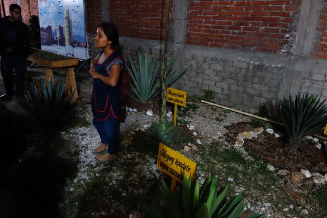 Oaxaca - 25mezcalfactory