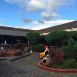 Antigua - 81macgarden