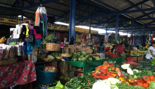 巨大メルカドへ!超新鮮チーズを購入!, Antigua, Guatemala