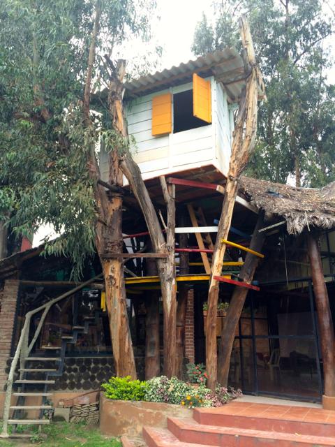 Cochabamba - 03treehouse