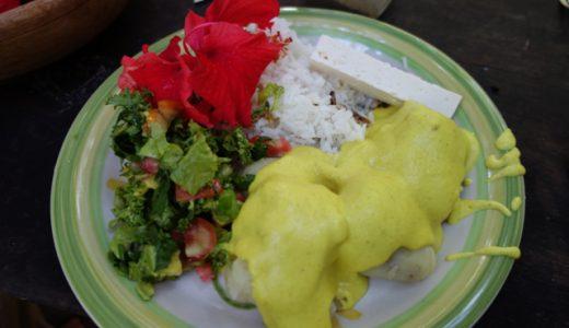 「生姜の楽園(Ginger's Paradise)」で洗濯&パパ・ア・ラ・ワンカイーナを食べる! , Bermejo , Bolivia