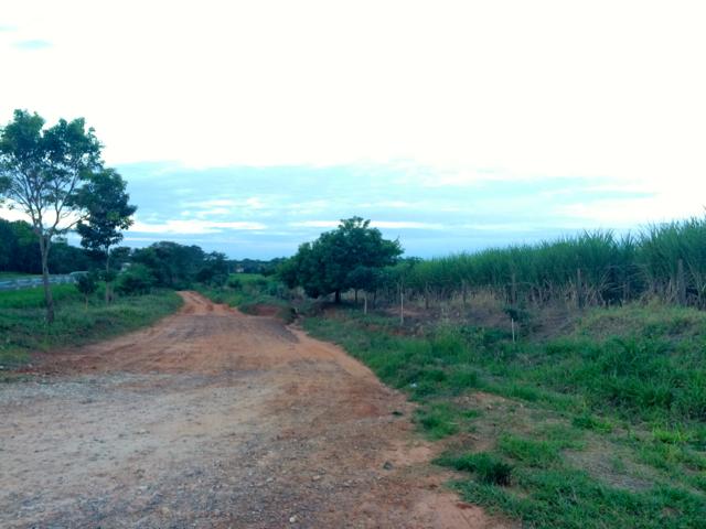Campo Grande - 29yuba