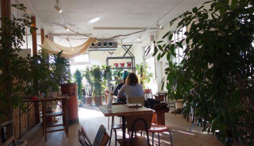 糸島の本格自家焙煎コーヒー「Petani coffee」