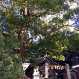 Itoshima - rokusho1