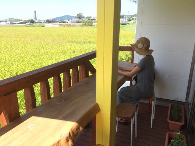 lapuni-小麦畑が広がる景色