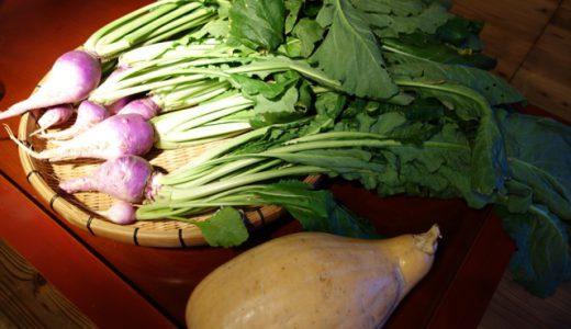 「旬産旬消」の食事会!日本一の野菜ソムリエが語る野菜の魅力@古材の森