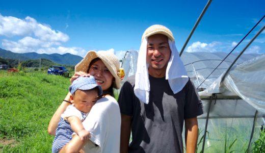 糸島で、待望のパクチーを育てる農家「MURA FARM」