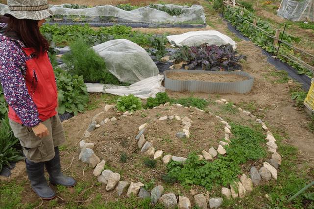 jardinpotager - 花壇