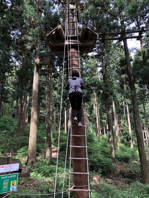 頑張って登ります。