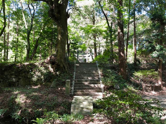 染井神社の参道