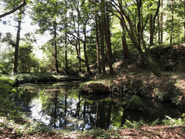 入り口の脇にある池