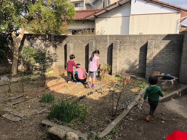 庭で虫を捕まえる子供たち
