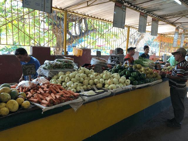 豊富な食材がある売り場